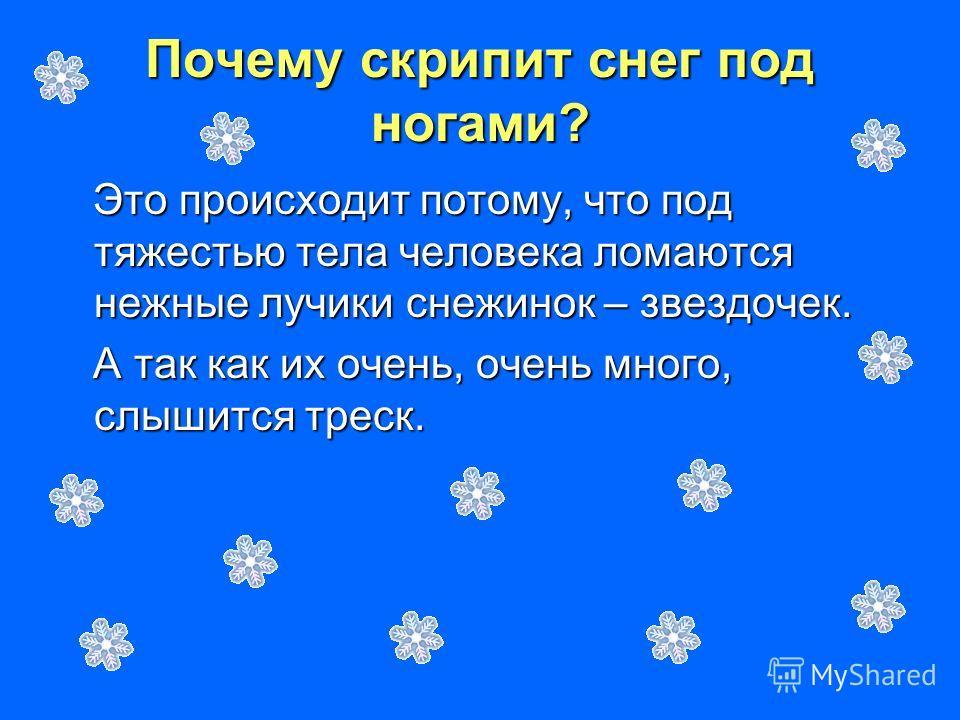 Почему скрипит снег под ногами? Это происходит потому, что под тяжестью тела человека ломаются нежные лучики снежинок – звездочек. Это происходит потому, что под тяжестью тела человека ломаются нежные лучики снежинок – звездочек. А так как их очень,