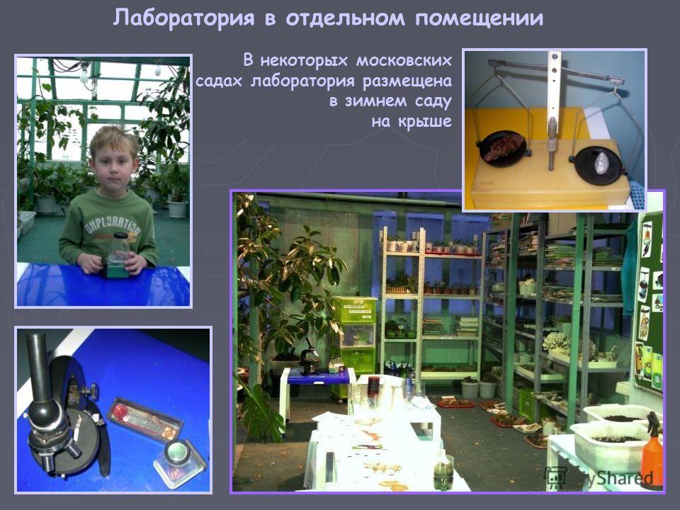 В некоторых московских садах лаборатория размещена в зимнем саду на крыше Лаборатория в отдельном помещении