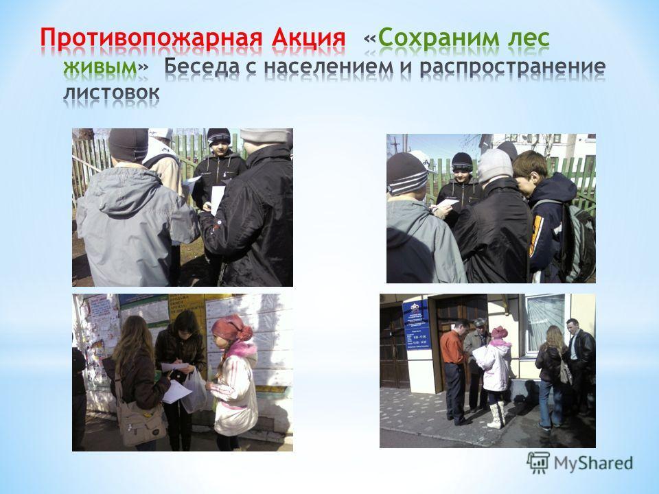 Участники Акции, ведут беседу с населением, распространяют листовки, развешивают плакаты в защиту хвойных насаждений