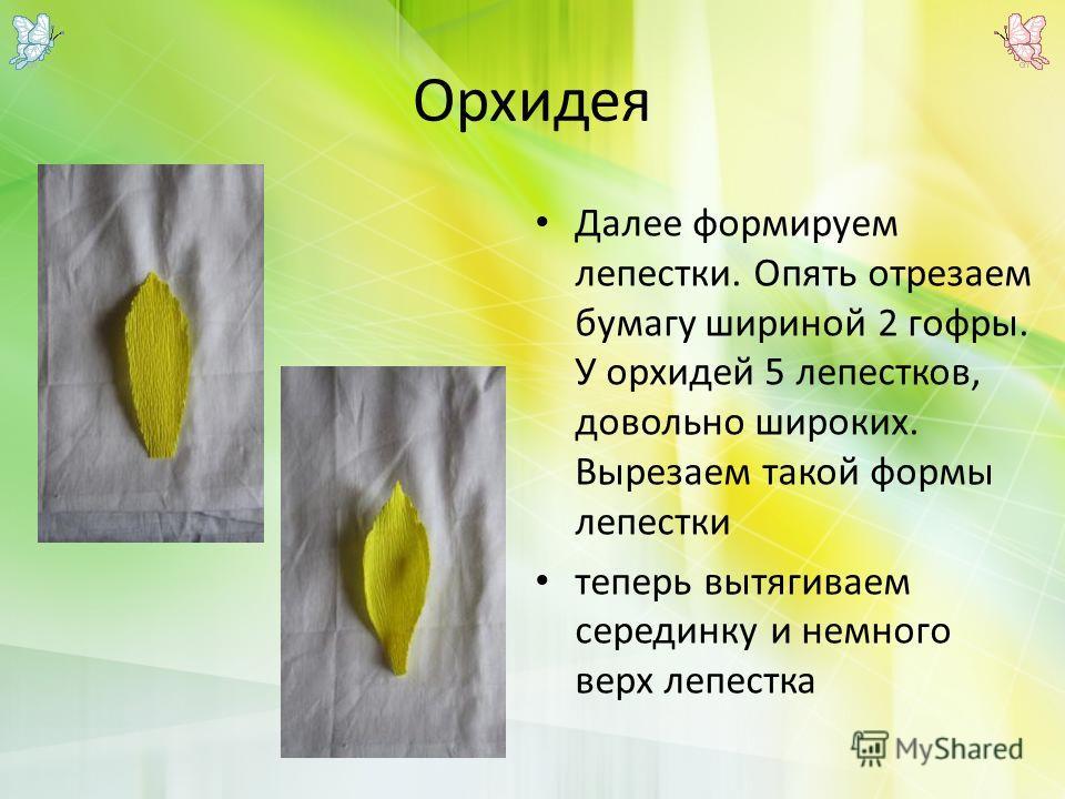 Орхидея Далее формируем лепестки. Опять отрезаем бумагу шириной 2 гофры. У орхидей 5 лепестков, довольно широких. Вырезаем такой формы лепестки теперь вытягиваем серединку и немного верх лепестка