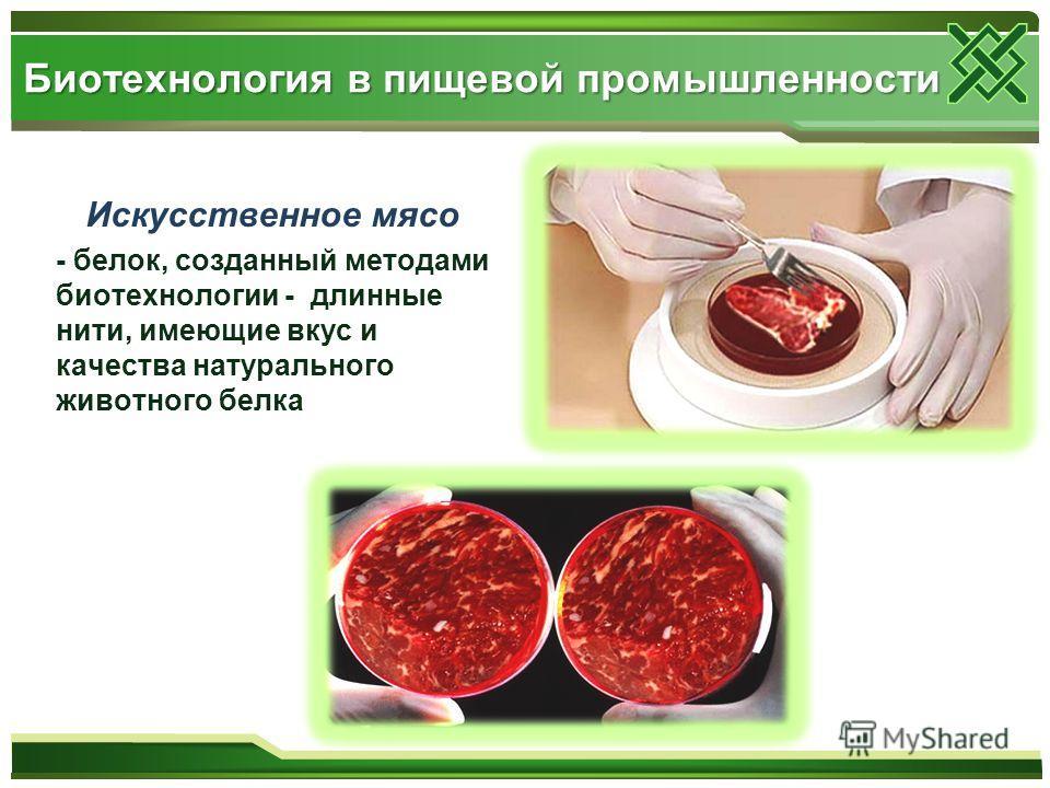Искусственное мясо - белок, созданный методами биотехнологии - длинные нити, имеющие вкус и качества натурального животного белка Биотехнология в пищевой промышленности