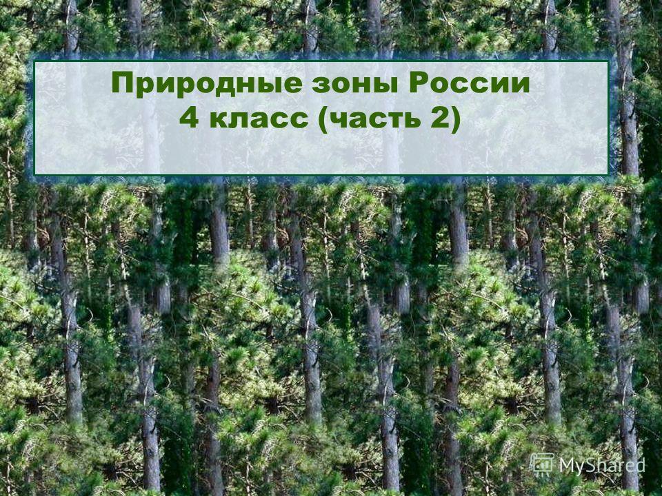 Природные зоны России 4 класс (часть 2)