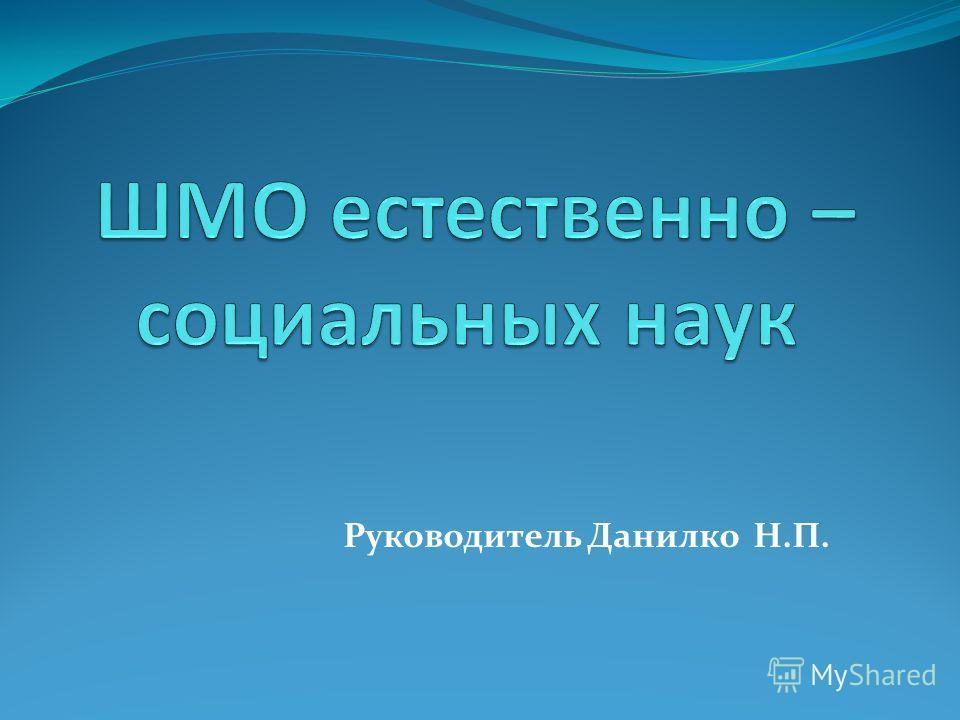 Руководитель Данилко Н.П.