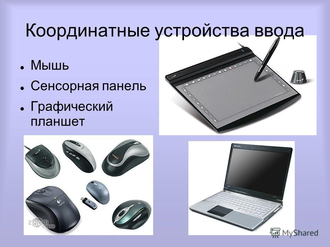 Координатные устройства ввода Мышь Сенсорная панель Графический планшет