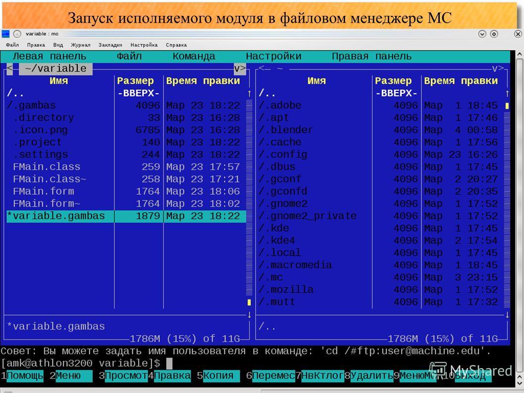 Запуск исполняемого модуля в файловом менеджере MC
