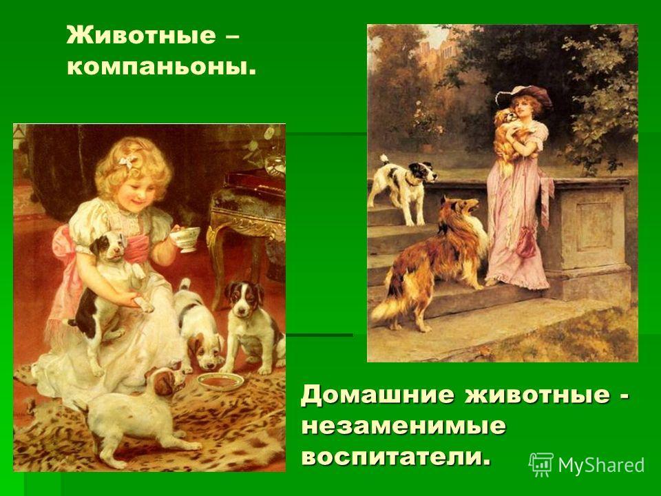 Животные – компаньоны. Домашние животные - незаменимые воспитатели.