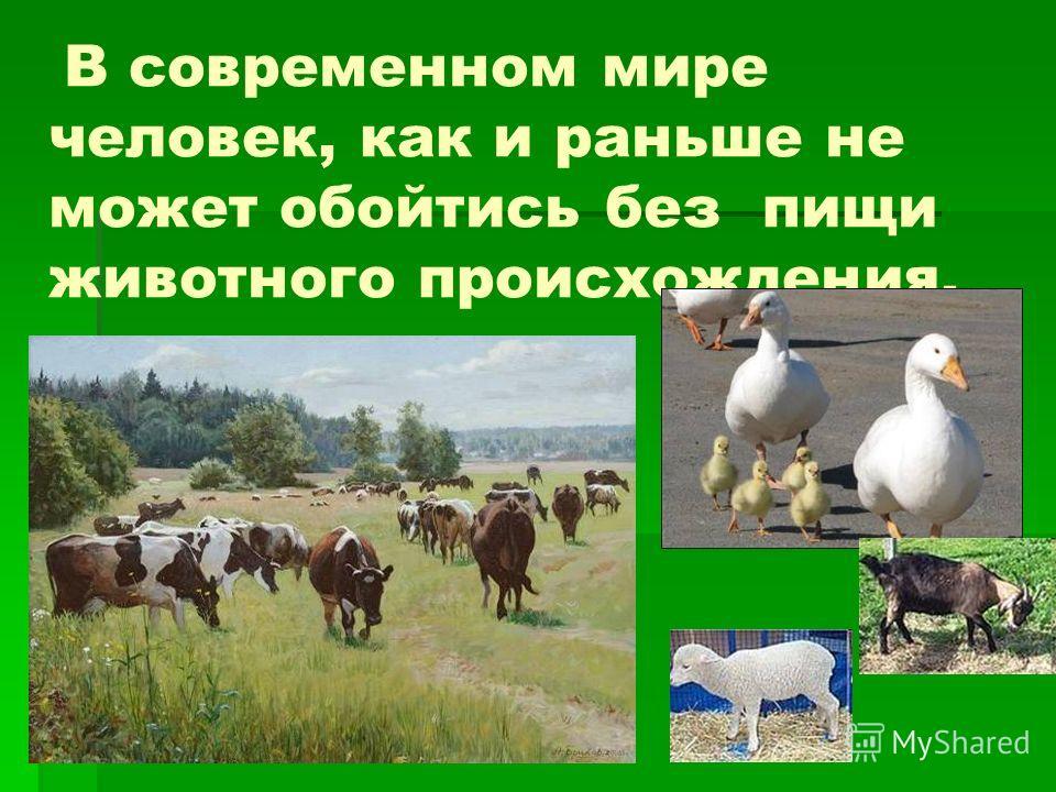 В современном мире человек, как и раньше не может обойтись без пищи животного происхождения.