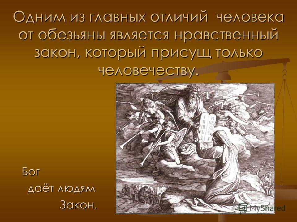 Одним из главных отличий человека от обезьяны является нравственный закон, который присущ только человечеству. Бог даёт людям Закон.