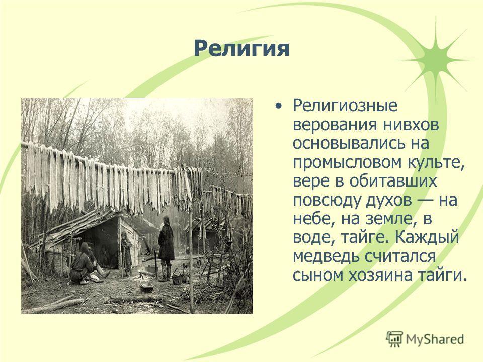 Религия Религиозные верования нивхов основывались на промысловом культе, вере в обитавших повсюду духов на небе, на земле, в воде, тайге. Каждый медведь считался сыном хозяина тайги.