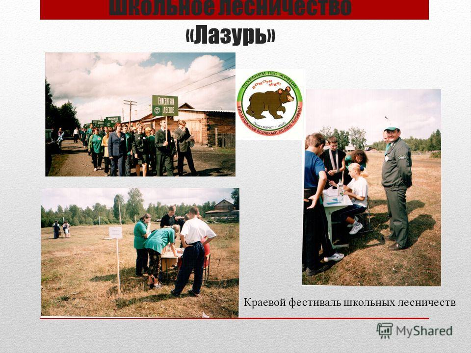 Школьное лесничество «Лазурь» Краевой фестиваль школьных лесничеств