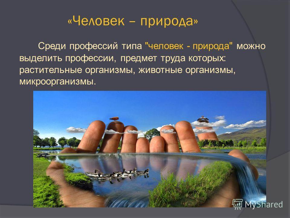 «Человек – природа» Среди профессий типа человек - природа можно выделить профессии, предмет труда которых: растительные организмы, животные организмы, микроорганизмы.