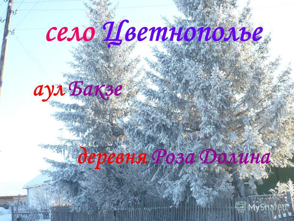 село Цветнополье аул Бакзе деревня Роза Долина