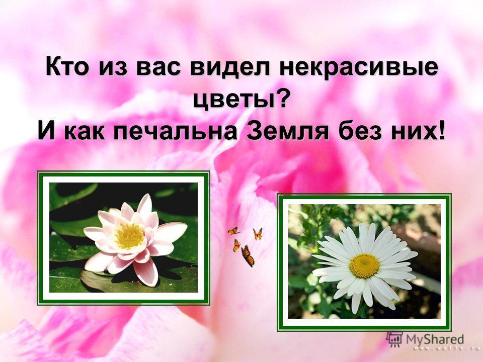 Кто из вас видел некрасивые цветы? И как печальна Земля без них!