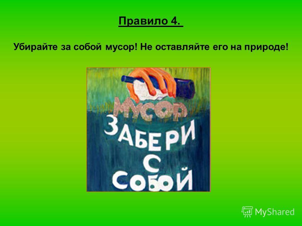 Правило 4. Убирайте за собой мусор! Не оставляйте его на природе!