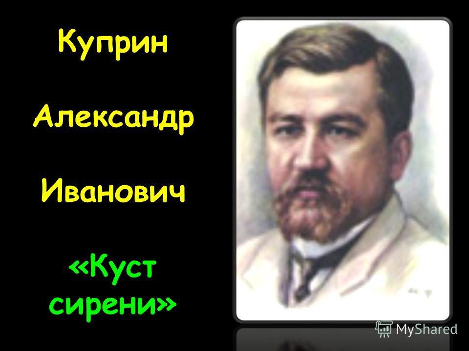 Куприн Александр Иванович «Куст сирени»