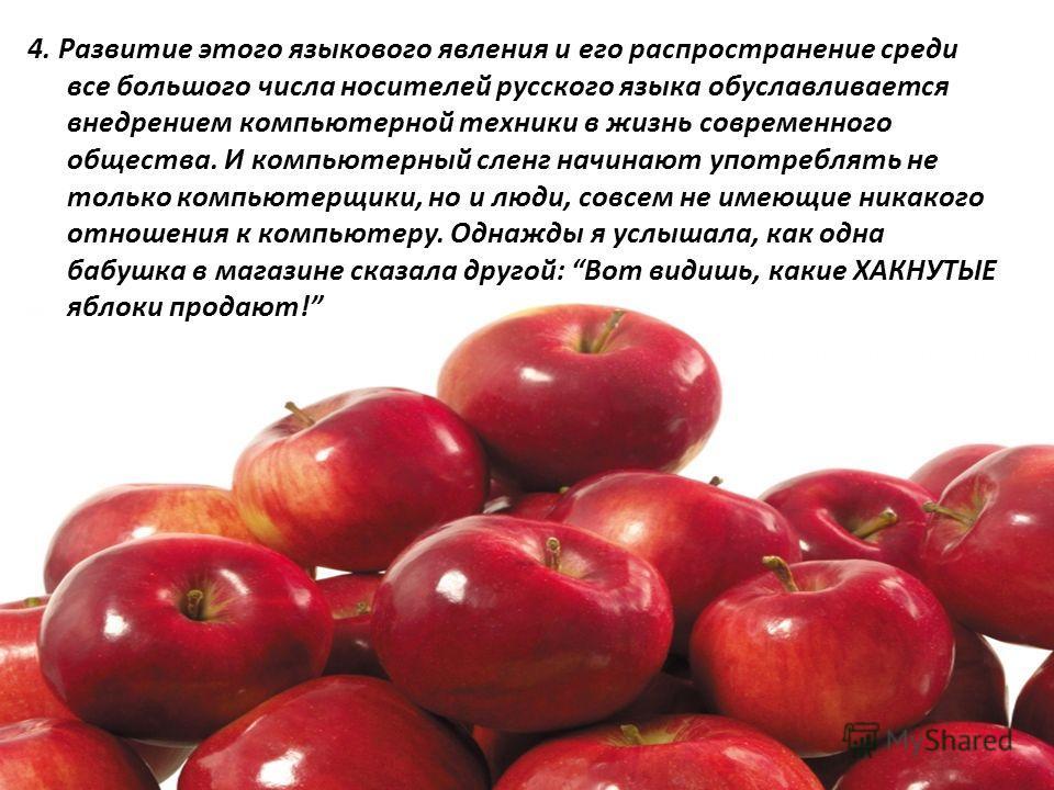 4. Развитие этого языкового явления и его распространение среди все большого числа носителей русского языка обуславливается внедрением компьютерной техники в жизнь современного общества. И компьютерный сленг начинают употреблять не только компьютерщи