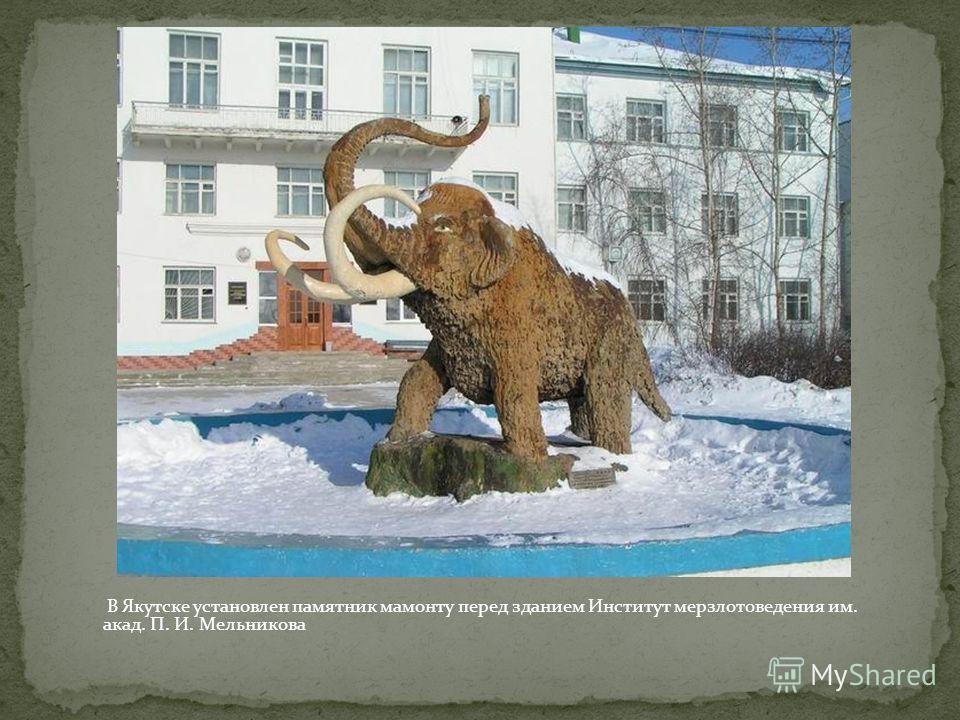 В Якутске установлен памятник мамонту перед зданием Институт мерзлотоведения им. акад. П. И. Мельникова