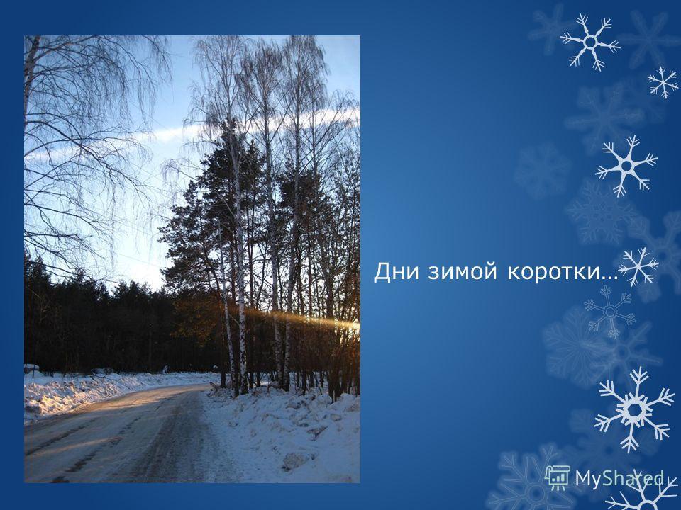 Дни зимой коротки…