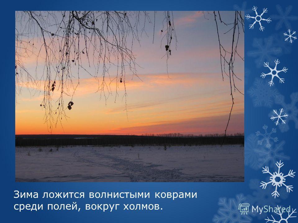 Зима ложится волнистыми коврами среди полей, вокруг холмов.