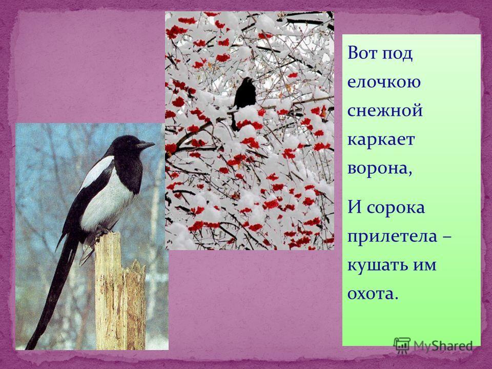 Вот под елочкою снежной каркает ворона, И сорока прилетела – кушать им охота.