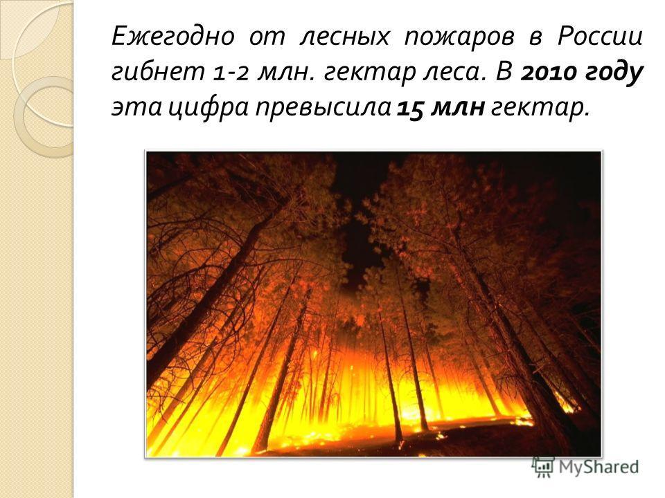 Ежегодно от лесных пожаров в России гибнет 1-2 млн. гектар леса. В 2010 году эта цифра превысила 15 млн гектар.