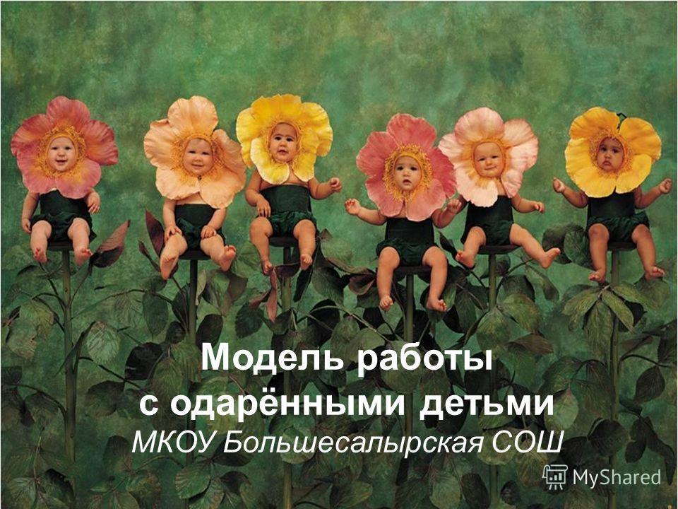 Модель работы с одарёнными детьми МКОУ Большесалырская СОШ