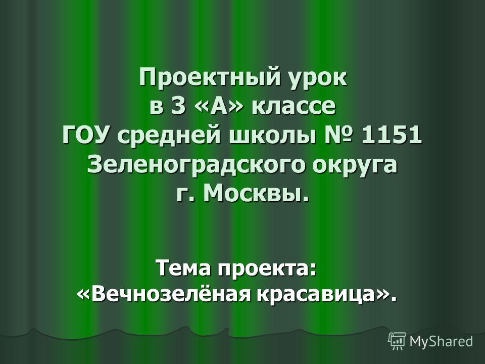 Проектный урок в 3 «А» классе ГОУ средней школы 1151 Зеленоградского округа г. Москвы. Тема проекта: «Вечнозелёная красавица».