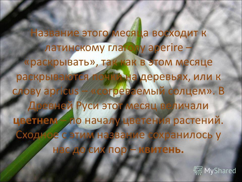 Название этого месяца восходит к латинскому глаголу aperire – «раскрывать», так как в этом месяце раскрываются почки на деревьях, или к слову apricus – «согреваемый солцем». В Древней Руси этот месяц величали цветнем – по началу цветения растений. Сх