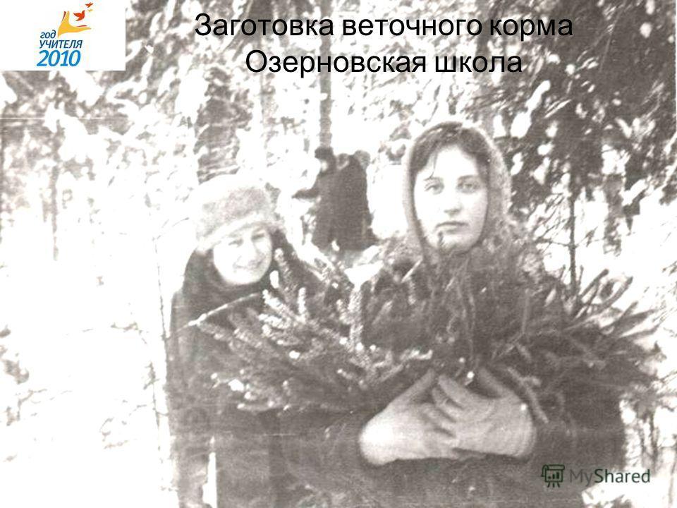 Заготовка веточного корма Озерновская школа