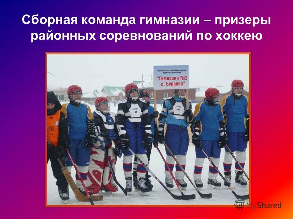 Сборная команда гимназии – призеры районных соревнований по хоккею