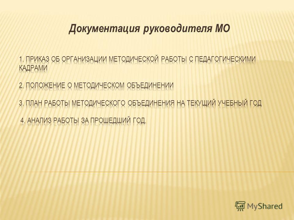 Документация руководителя МО