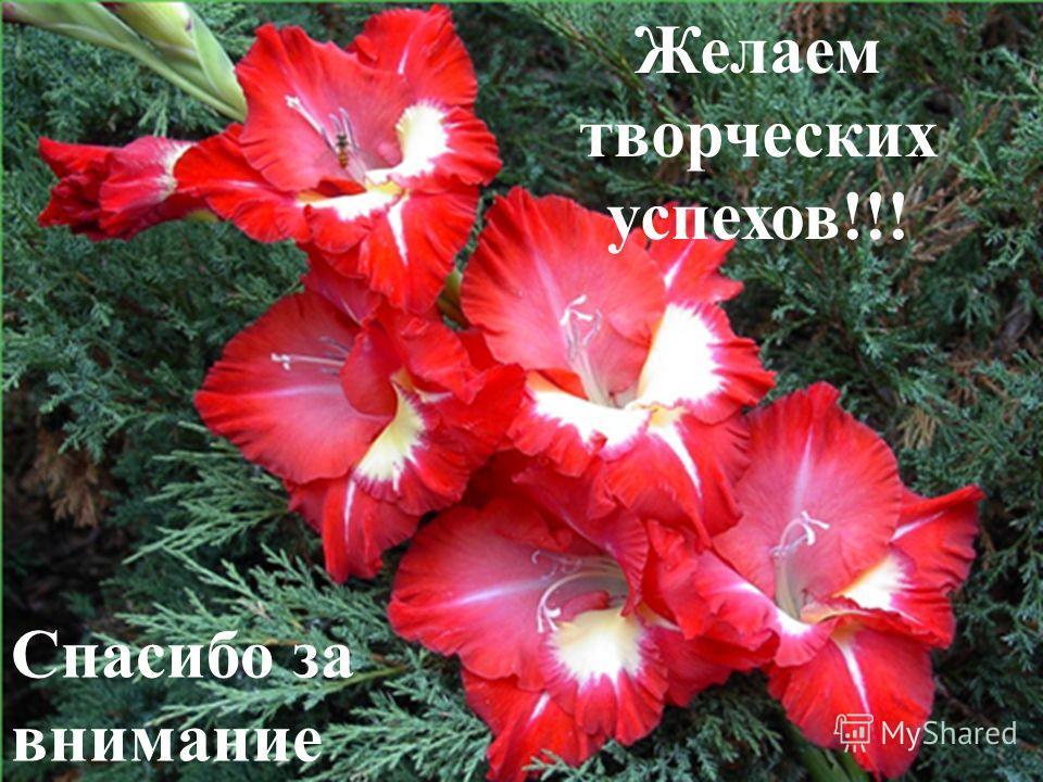 Желаем творческих успехов!!! Спасибо за внимание