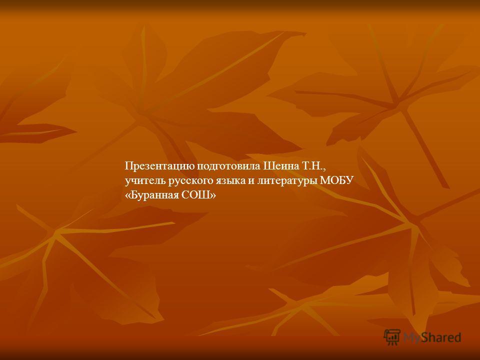 Презентацию подготовила Шеина Т.Н., учитель русского языка и литературы МОБУ «Буранная СОШ»