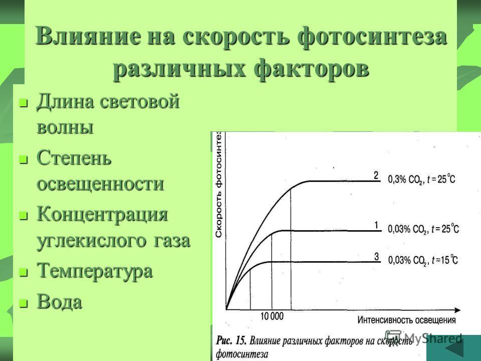 Влияние на скорость фотосинтеза различных факторов Длина световой волны Длина световой волны Степень освещенности Степень освещенности Концентрация углекислого газа Концентрация углекислого газа Температура Температура Вода Вода