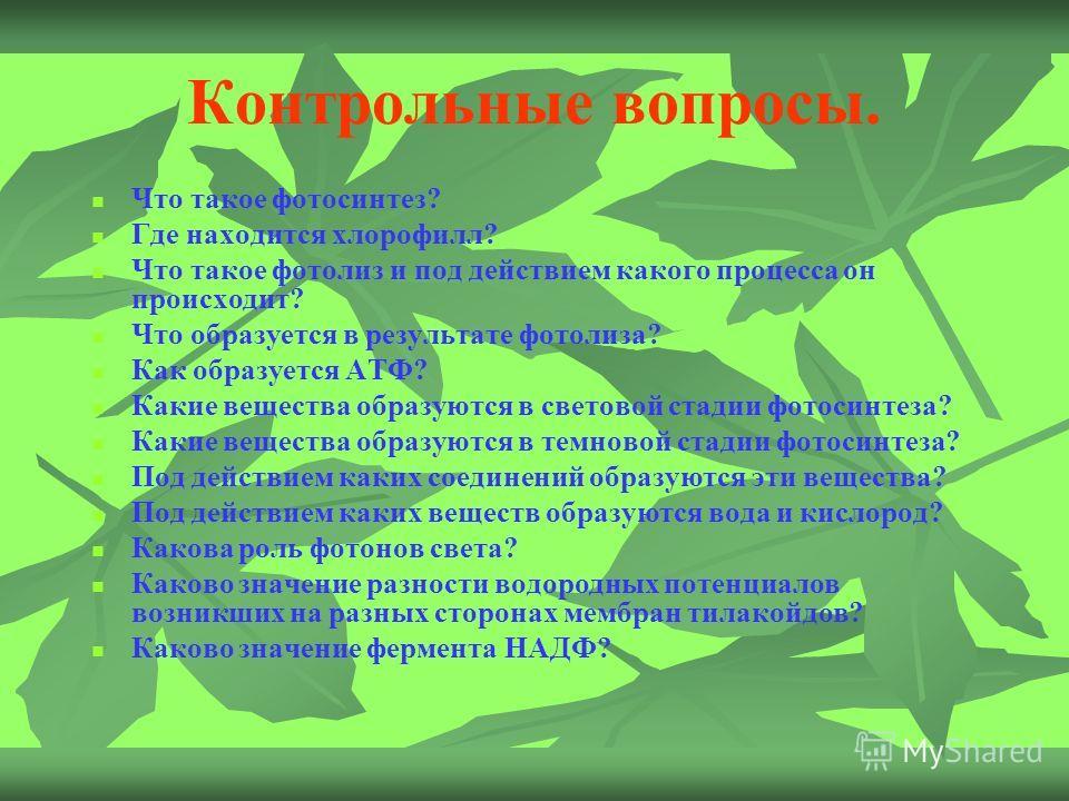 Контрольные вопросы. Что такое фотосинтез? Где находится хлорофилл? Что такое фотолиз и под действием какого процесса он происходит? Что образуется в результате фотолиза? Как образуется АТФ? Какие вещества образуются в световой стадии фотосинтеза? Ка