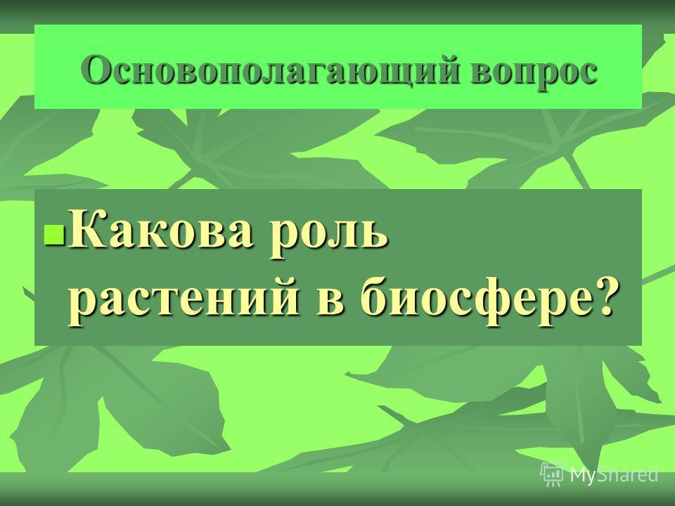 Основополагающий вопрос Какова роль растений в биосфере? Какова роль растений в биосфере?