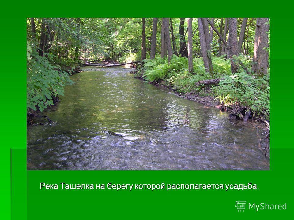 Река Ташелка на берегу которой располагается усадьба.