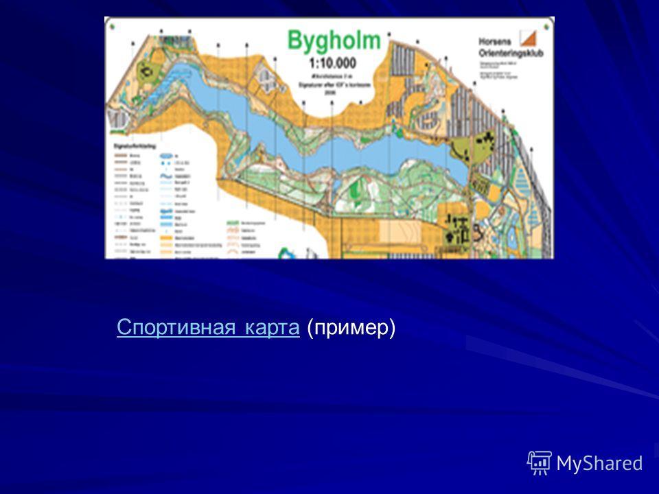 Спортивная картаСпортивная карта (пример)