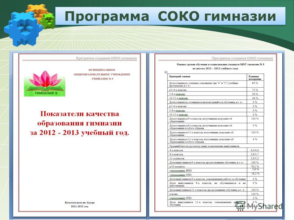Программа СОКО гимназии