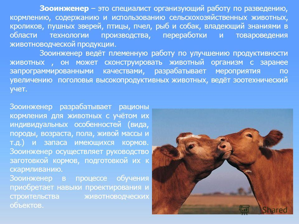 Зооинженер – это специалист организующий работу по разведению, кормлению, содержанию и использованию сельскохозяйственных животных, кроликов, пушных зверей, птицы, пчел, рыб и собак, владеющий знаниями в области технологии производства, переработки и