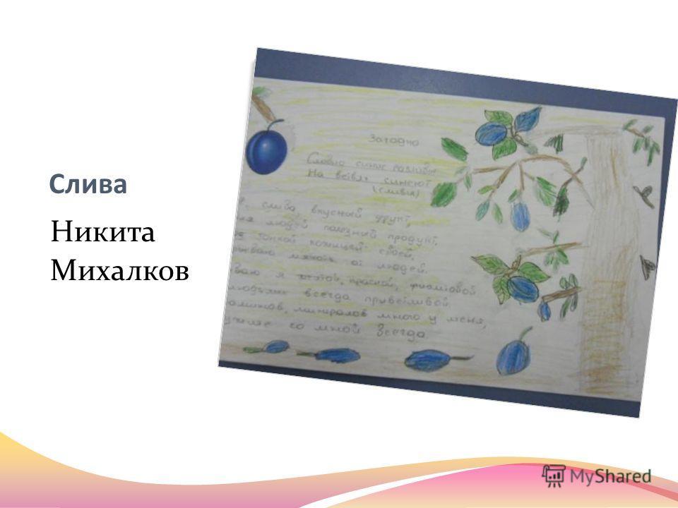 Слива Никита Михалков