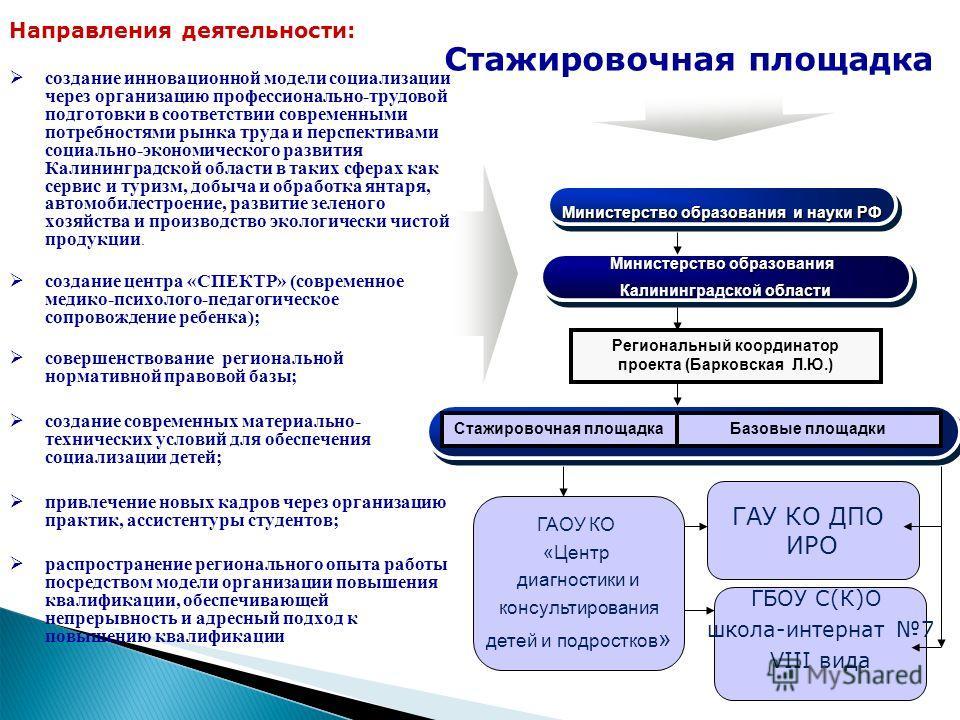 Стажировочная площадка Направления деятельности: создание инновационной модели социализации через организацию профессионально-трудовой подготовки в соответствии современными потребностями рынка труда и перспективами социально-экономического развития