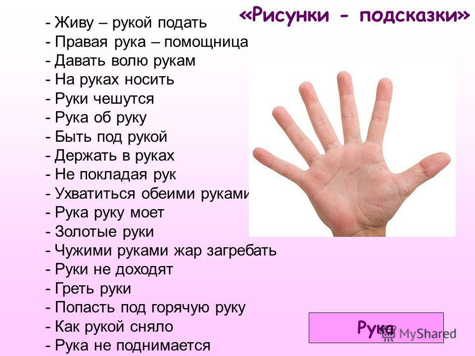 «Рисунки - подсказки» - Живу – рукой подать - Правая рука – помощница - Давать волю рукам - На руках носить - Руки чешутся - Рука об руку - Быть под рукой - Держать в руках - Не покладая рук - Ухватиться обеими руками - Рука руку моет - Золотые руки