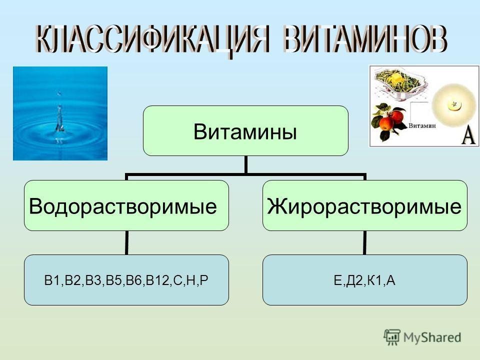 Витамины Водорастворимые В1,В2,В3,В5,В6,В12,С,Н,Р Жирорастворимые Е,Д2,К1,А