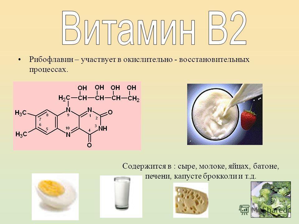 Рибофлавин – участвует в окислительно - восстановительных процессах. Содержится в : сыре, молоке, яйцах, батоне, печени, капусте брокколи и т.д.