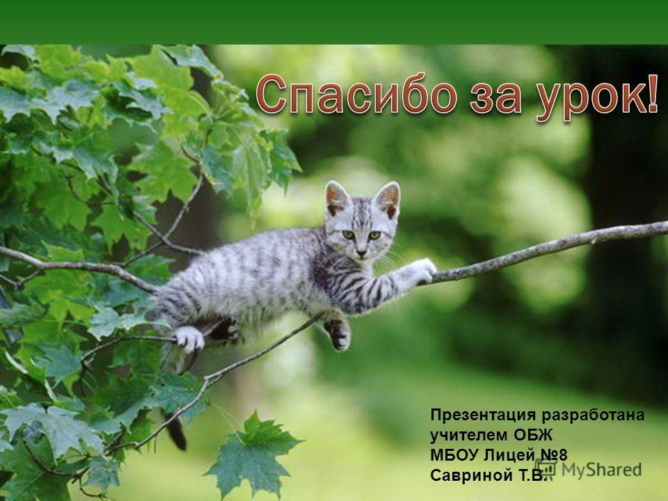 Презентация разработана учителем ОБЖ МБОУ Лицей 8 Савриной Т.В.