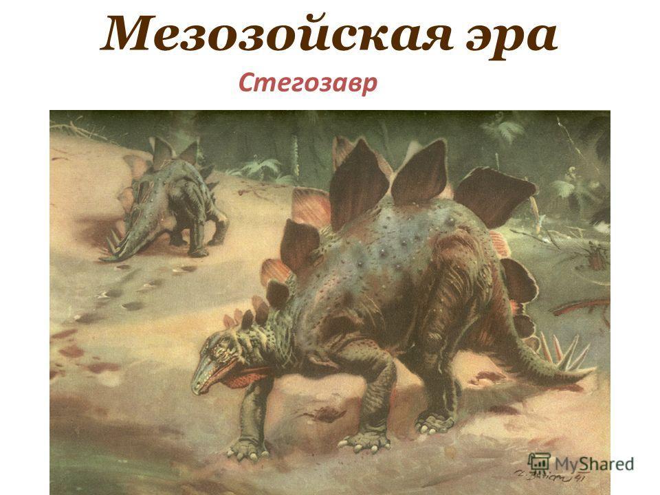 Мезозойская эра Стегозавр