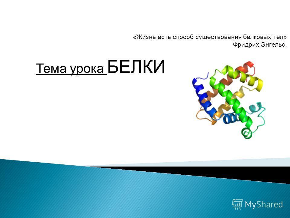 Тема урока БЕЛКИ «Жизнь есть способ существования белковых тел» Фридрих Энгельс.