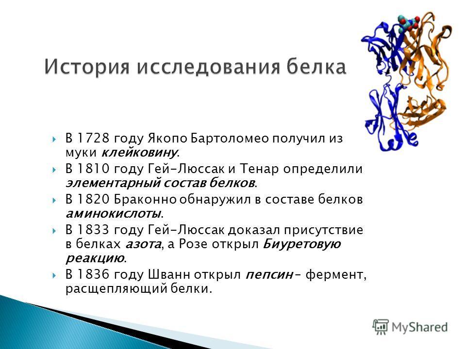 В 1728 году Якопо Бартоломео получил из муки клейковину. В 1810 году Гей-Люссак и Тенар определили элементарный состав белков. В 1820 Браконно обнаружил в составе белков аминокислоты. В 1833 году Гей-Люссак доказал присутствие в белках азота, а Розе