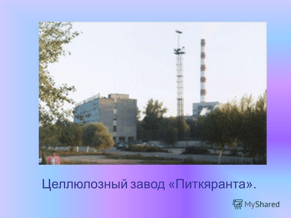 Целлюлозный завод «Питкяранта».